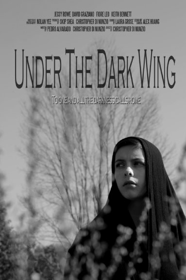 Under the Dark Wing Poster